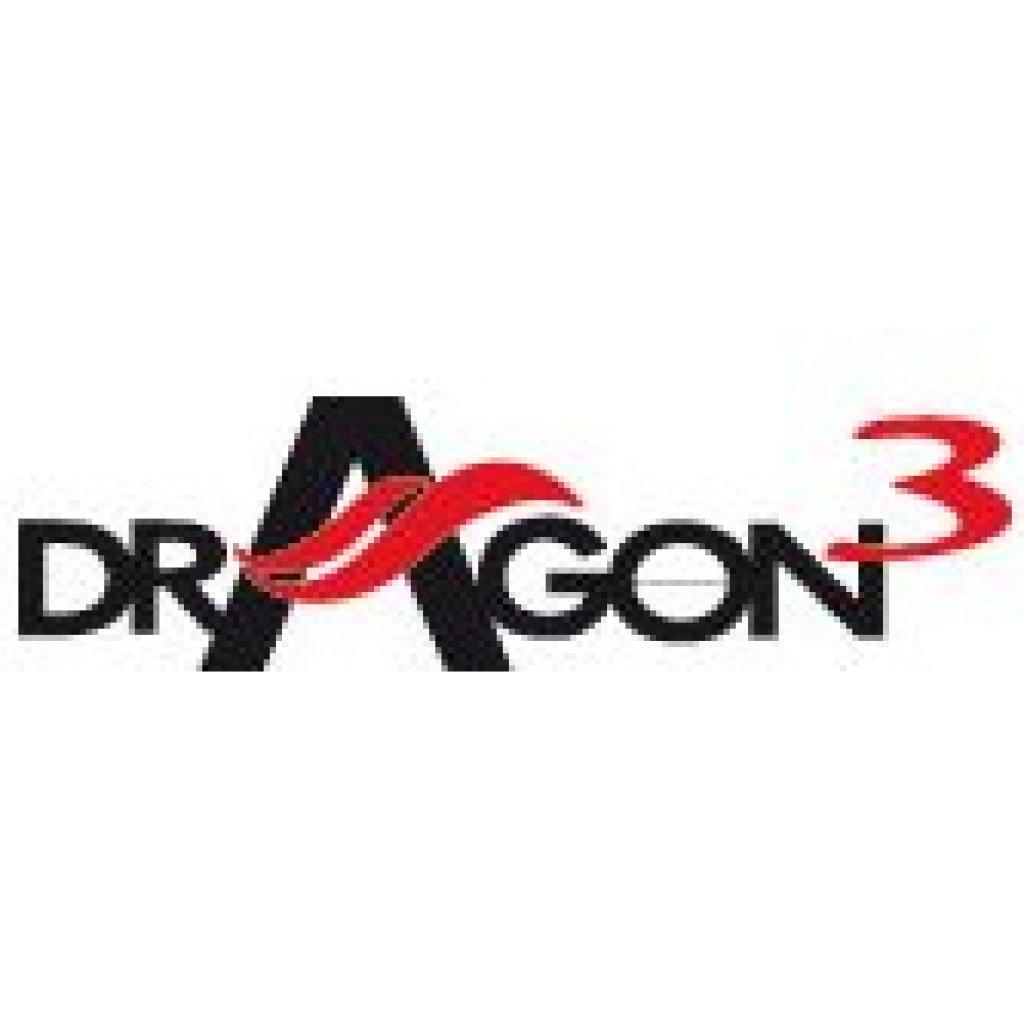 delonghi dragon 4 timer instructions